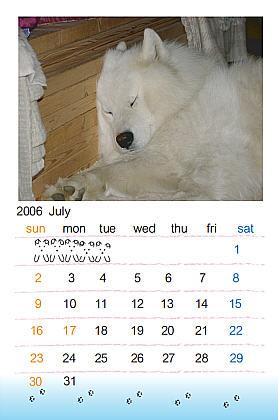 200607aa.jpg